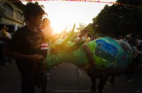 A farmer's carabao or water buffalo along with its young care taker awaits for the judging of 2013 Viva Vigan Binatbatan Festival Carabao Painting Contest after it was painted by local artists and was paraded during sun down in Vigan City, Ilocos Sur.