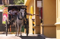 DRIVE-THRU. Tourists aboard a calesa (horse-drawn cart) stop by a fast-food drive-thru for soda to beat the summer heat in the heritage city of Vigan in Ilocos Sur.