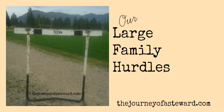 Our Large Family Hurdles by The Journey of a Steward