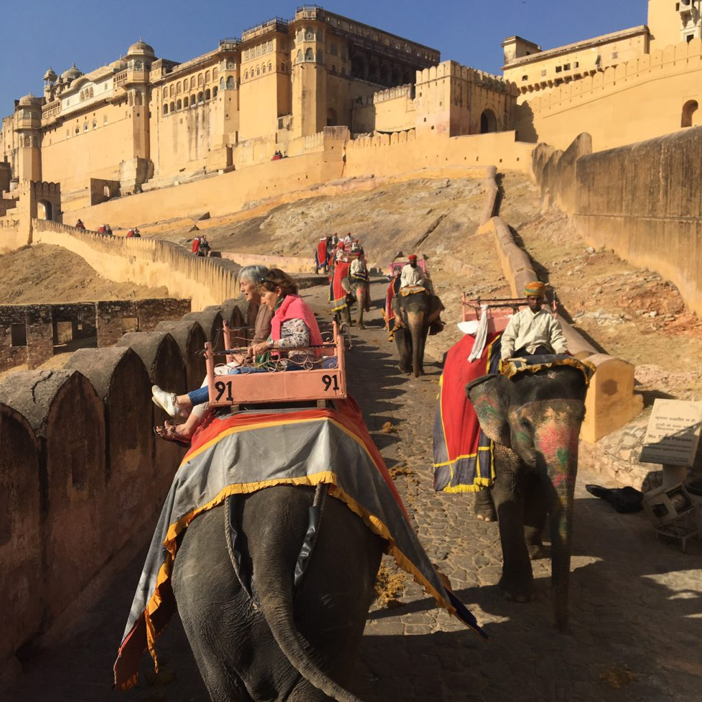 Riding an elephant up to the Amber Fort in Jaipur