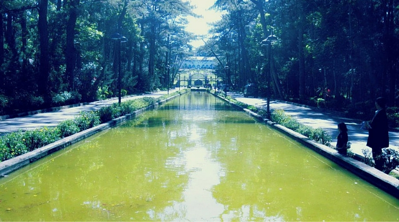Baguio Pool of Pines