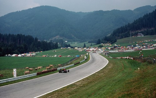 racecarscows2-austria-83sign