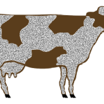 Dirty COW; CVE-2016-5195