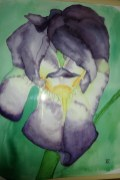 Iris by Stuart Young
