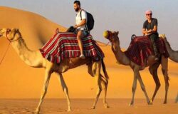 Desert Safari abudhabi- Best Safari Offers & Tour Deals 2020