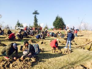 forest deptt north circle starts plantation campaign to increase
