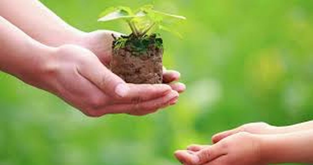 Adoption of Eco-Friendly Practices For Sustainable Development