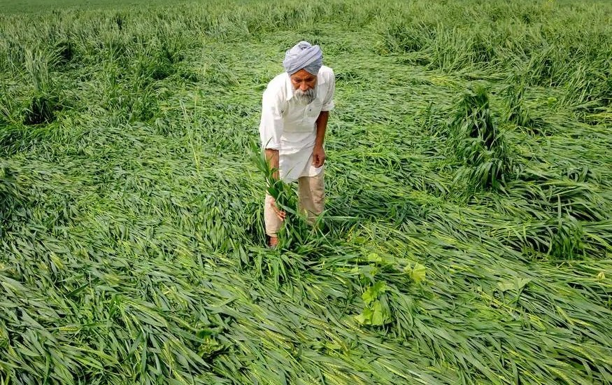 Modi to release 8th installment of PM-KISAN benefits on Friday