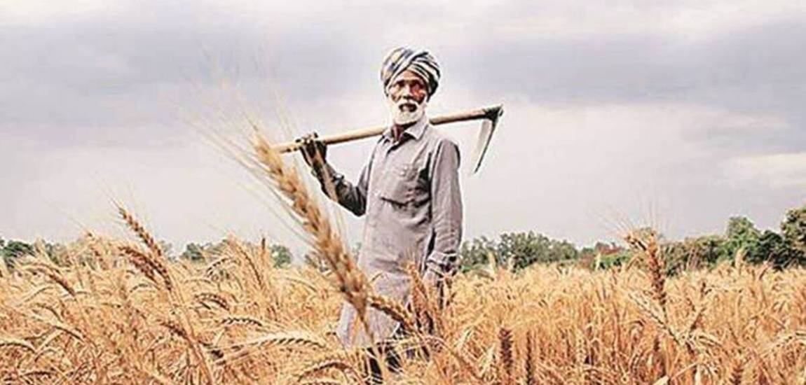 Govt finalises products under scheme to increase farmer income, exports
