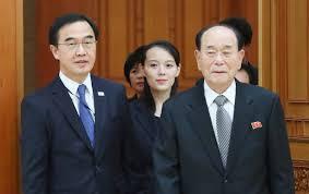 Summit between Trump and Kim Jong-un 'misleading'-Pyongyang