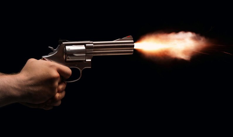 VDC member kills self after shooting dead his wife in Doda