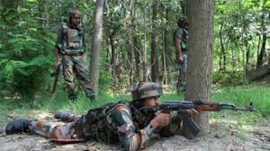 Forces launch cordon and search operations in north Kashmir woods
