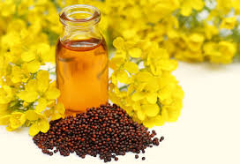 Mustard Oil Company slapped Rs 2 lakh fine