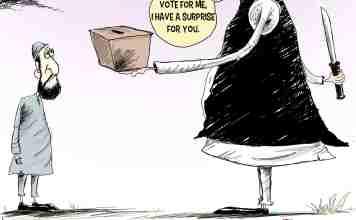 Kashmir, Kashmir elections, Lok Sabha Elections, Jammu and Kashmir, India, Pakistan, Cartoons