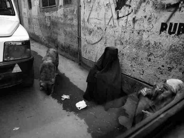 kashmir, kashmir latest news, kashmiri women, women in kashmir, women begging