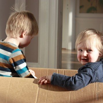 An English Mamma in Stockholm: brothers siblings playing in a box