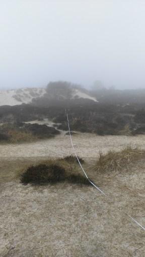Measuring through the fog