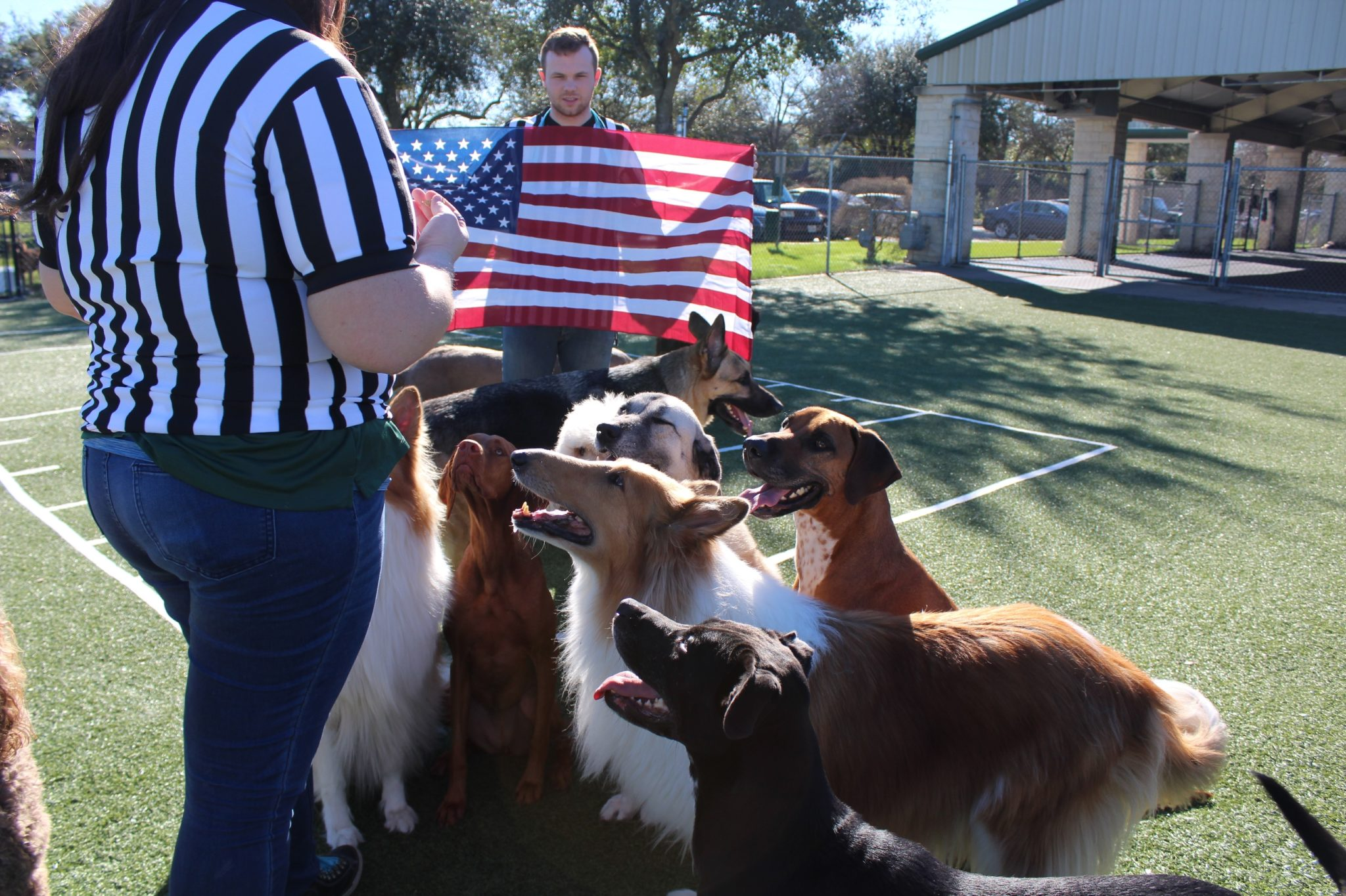 Dogs Sit for National Anthem 3 – The Katy News