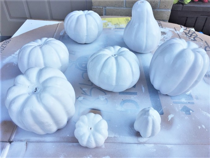 painted dollare store pumpkins