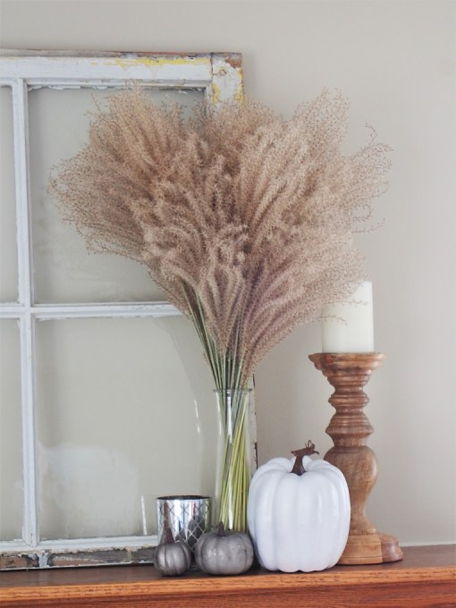 fall mantel grass