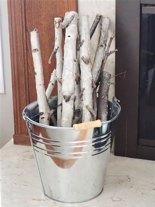 birch and galvanized bucket