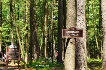 Bushkill Fall Entrance to falls