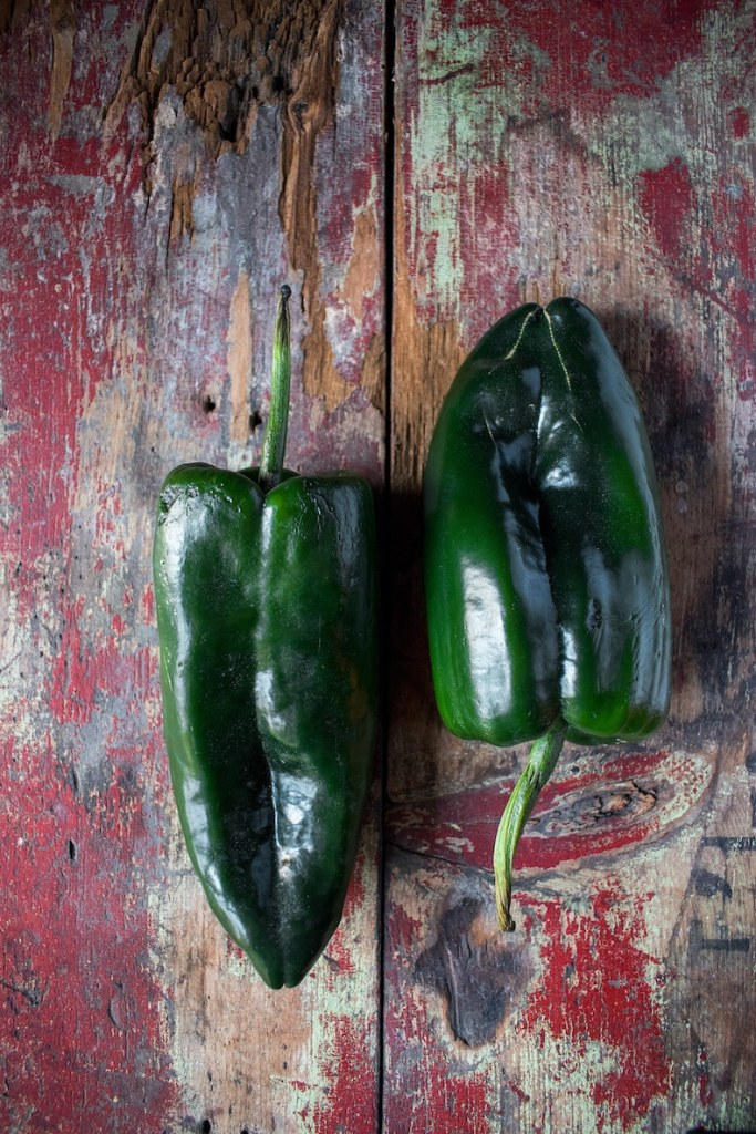 Fresh dark green poblano pepper on rustic red wood back drop