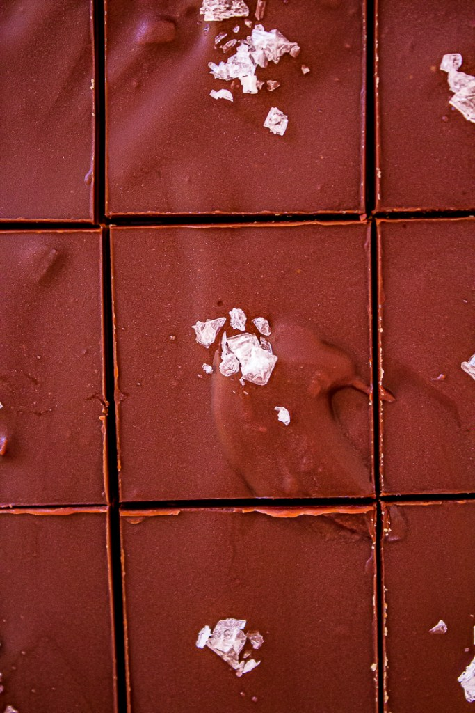 Close up of brown chocolate dessert cut into squares. Center of each brown square is white flakes in small pile.