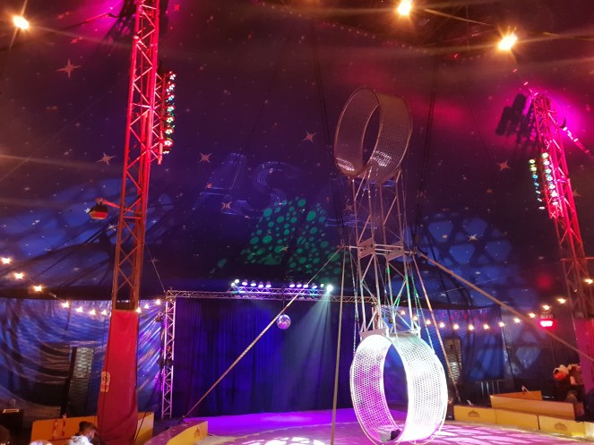 The bright lights of my circus surprise