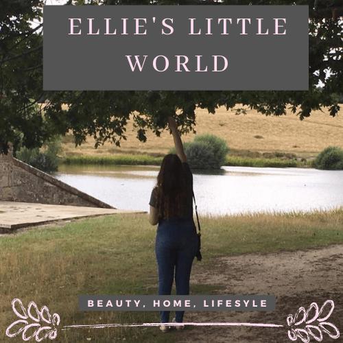 Meet my February advertiser Ellie's Little World Logo.
