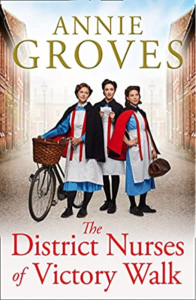 The District Nurses Of Victory Walk Book Cover