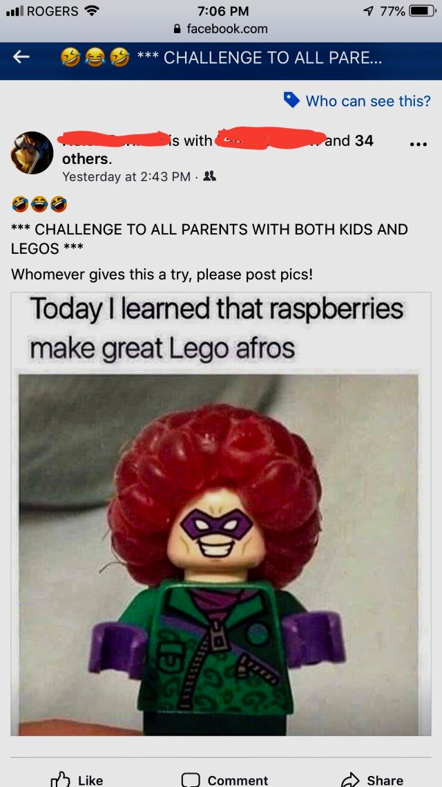 raspberry-headed lego person