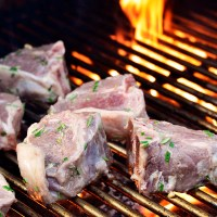 grilled lamb chops featured image