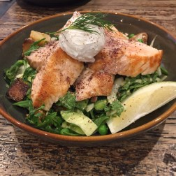 Grilled Salmon Salad with Fennel, Garden Salad, Asparagus, Potato and Poached Eggs