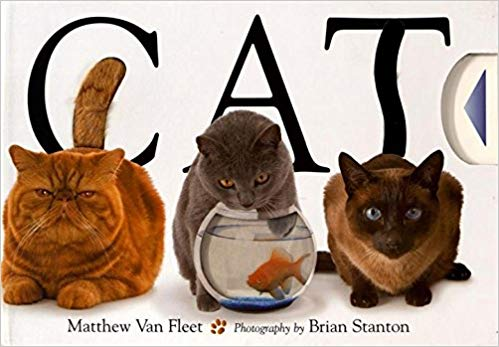 Cat Book - By Matthew Van Fleet -