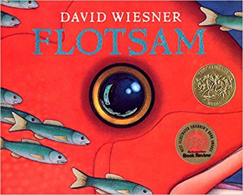 Flotsam - Children's Books about the Ocean