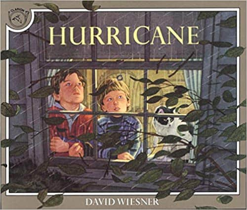 Hurricane by David Weisner - children's books about the weather