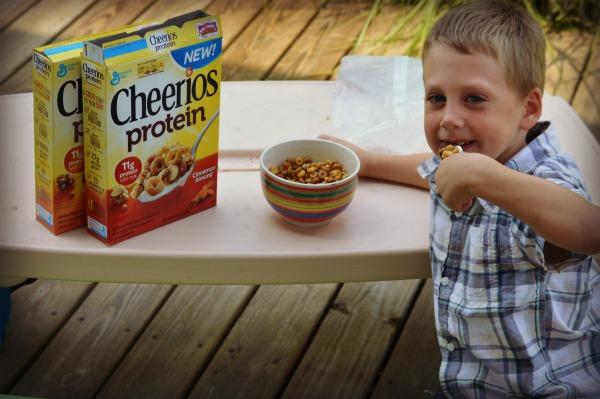 cheeriosprotein