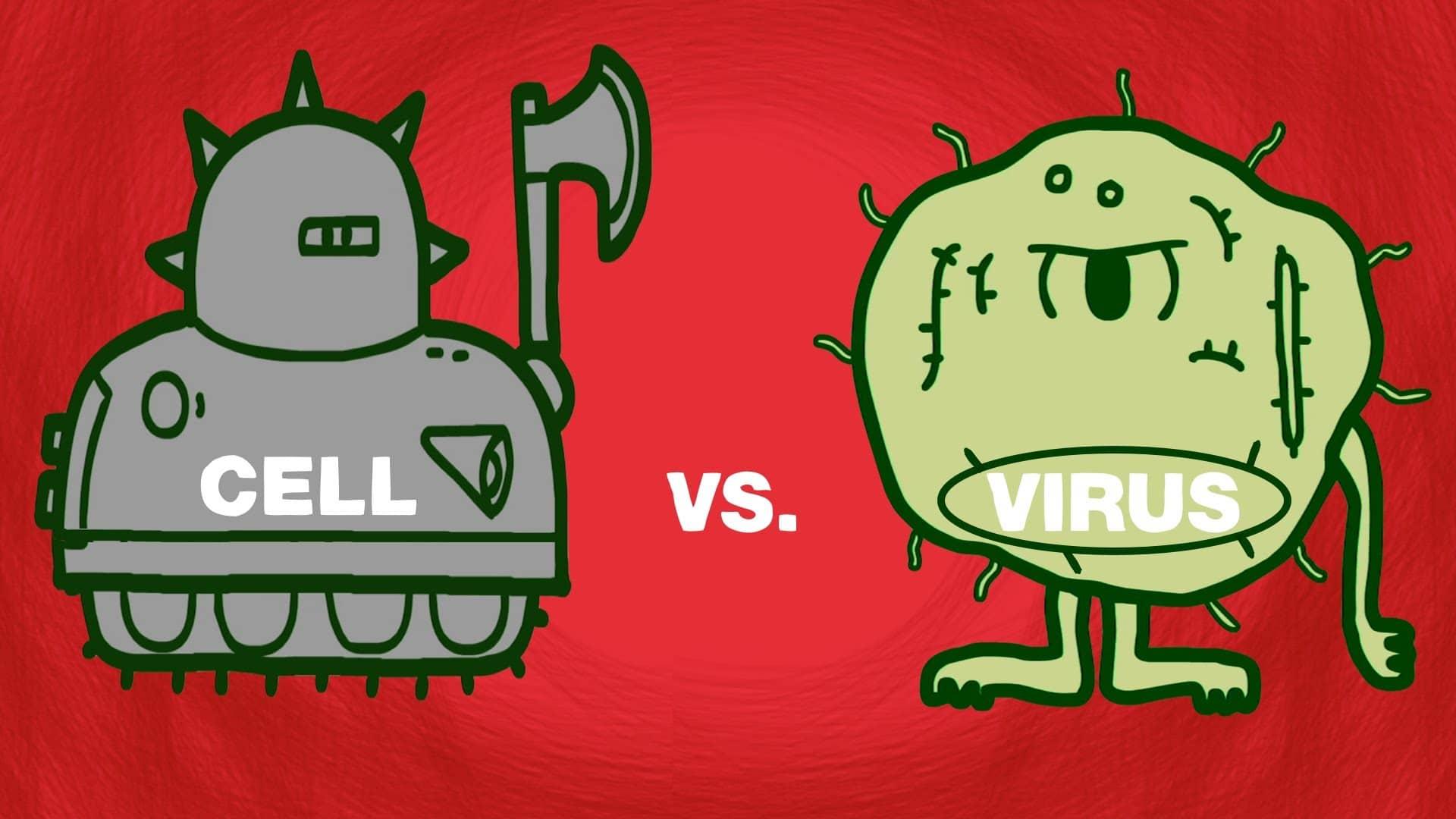Cell Vs Virus A Battle For Health