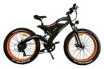 Best Electric Bicycle For Children and Adults