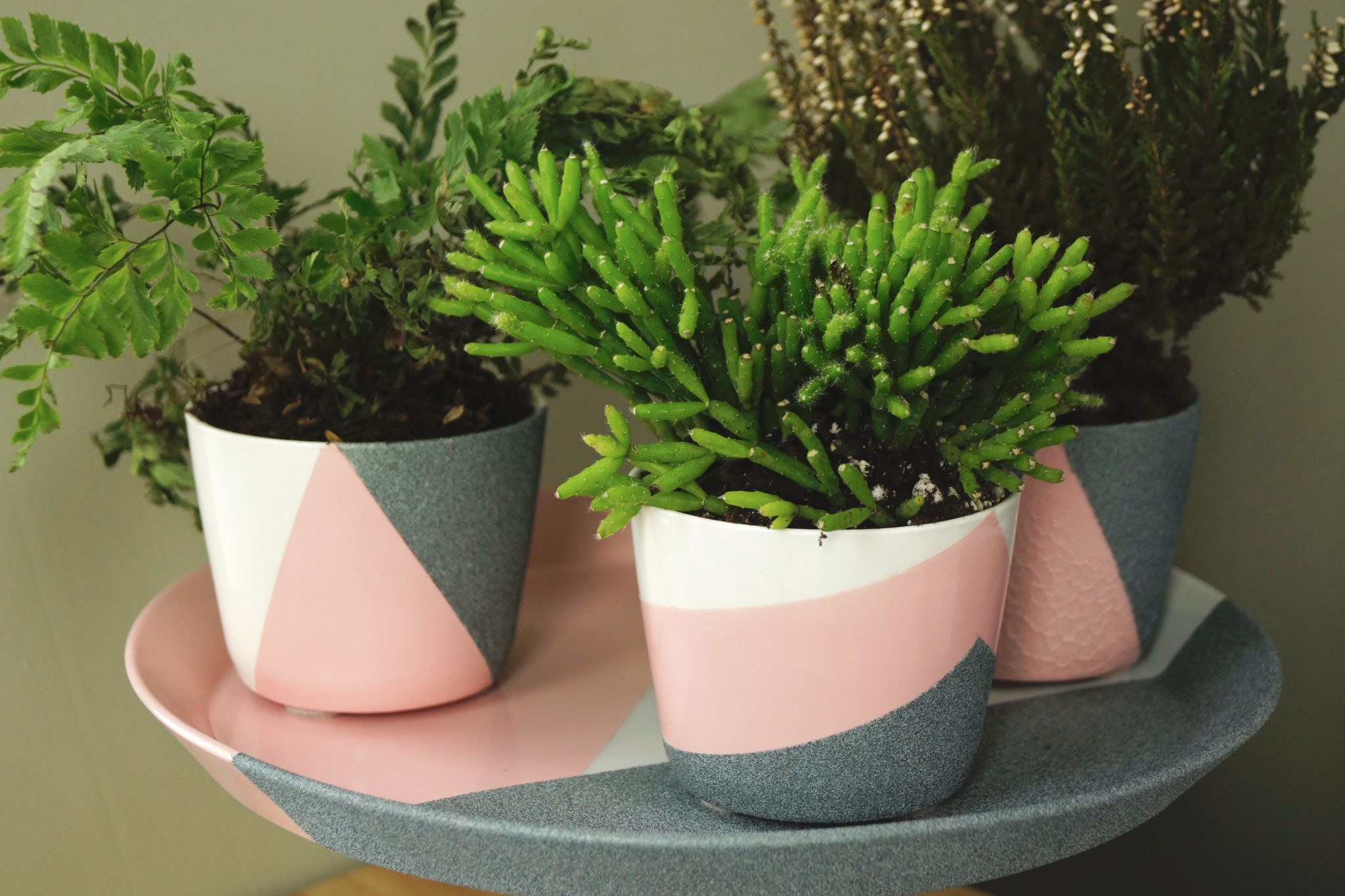 DIY Geometric Spray Paint Planters - Do It Yourself - Design It Yourself - CB2 - Crate and Barrel - Crate & Barrel - Plant - Krylon ColorMaster - Grante Stone Spray Paint - TheKillerLook.com - The Killer Look