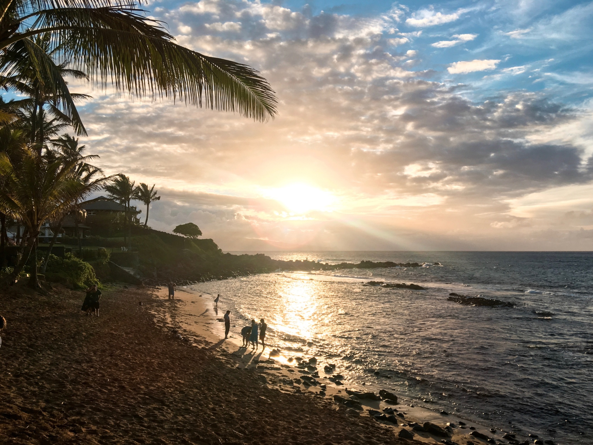 Breeze 4K Yuneec - Drone - Selfie Drone Easy to Pilot & Carry Pack - Palm Trees - Hawaii Maui Wailea Pā'ia - Summer - Beach - Ocean - Sunset - Mama's Fish House - Paia - Golden Hour - Marble - Dreamy - Killer Travel - Killer Look Travels - TheKillerLook.com - The Killer Look