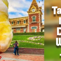 Pineapple Cotton Candy | Dole Whip Cotton Candy | Disneyland