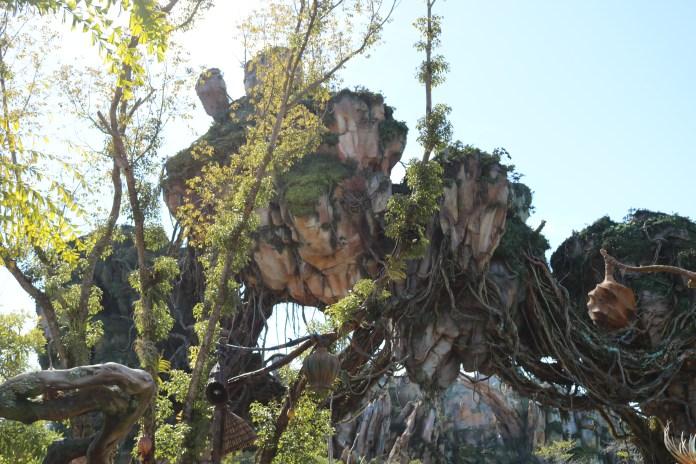 Pandora - The World of Avatar in Disney's Animal Kingdom
