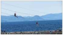 Lines: zip line cables across the bay
