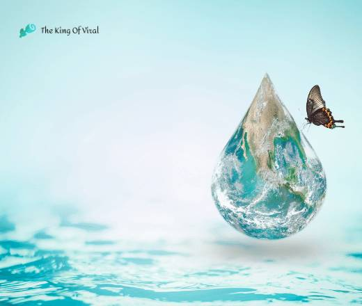 save water poster with butterfly
