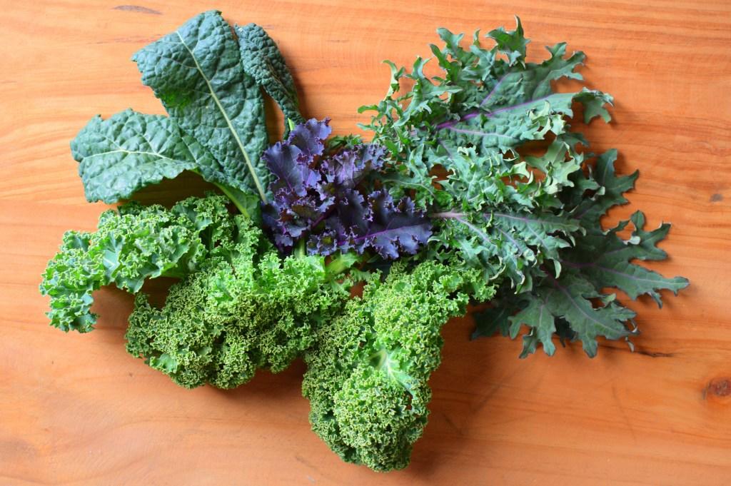Four Types of Kale