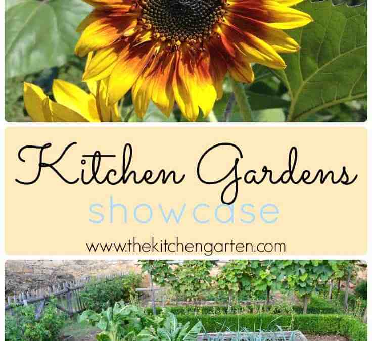 Kitchen Garden Showcase!