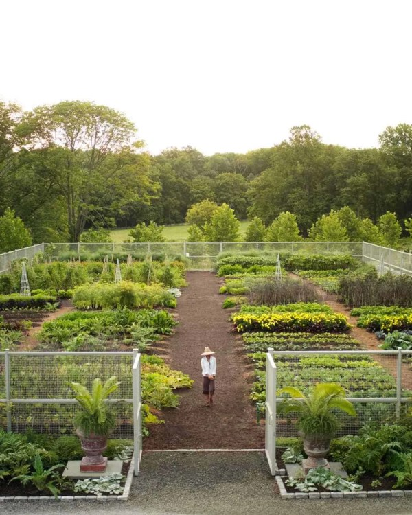 martha stewart's vegetable garden