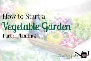 planning veg garden